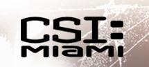 CSI Miami Logo - Inverted