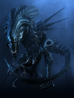 Alien Queen from the movie