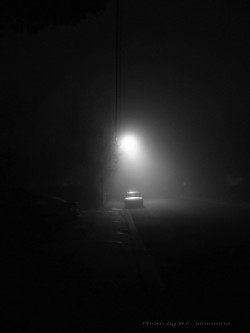 A lonely parked car in the fog - DSC00083-02-bw