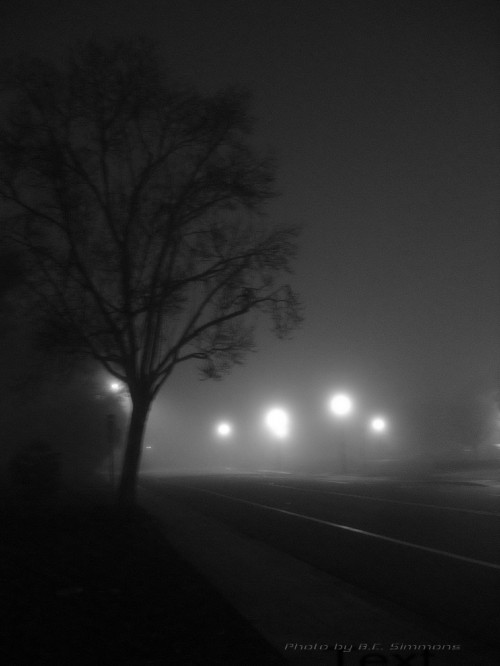 Fog Enshrouded Tree Backlit by lamp post 1-18-11