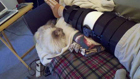 Dealing with Knee Surgery - watch cat