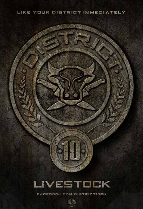 'The Hunger Games' District 10