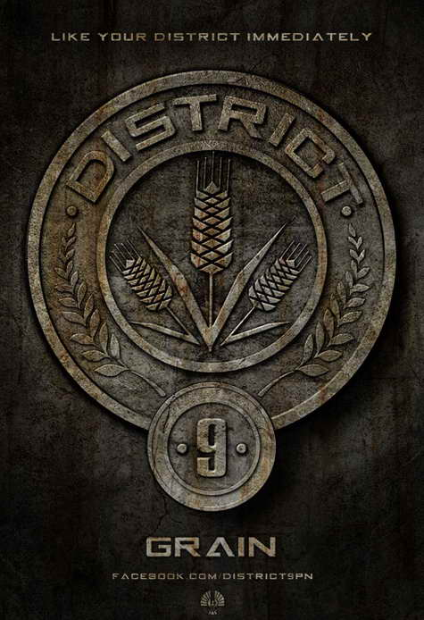 'The Hunger Games' district 9