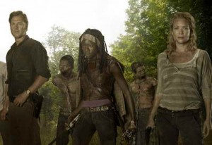 The Walking Dead season 3 promo art - The Governor and  Michonne