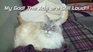Loud Ads on TV in 2013