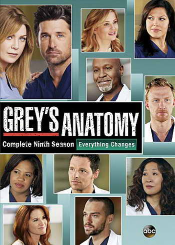 'Grey's Anatomy' season nine on dvd