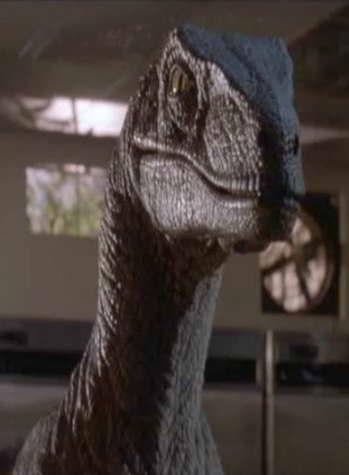 Raptor from 'Jurassic Park'