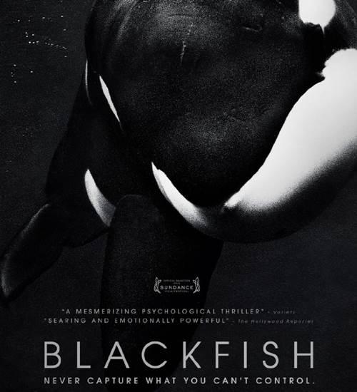 'Blackfish' film review