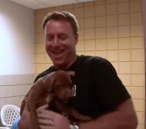 SPCA, ABBA video