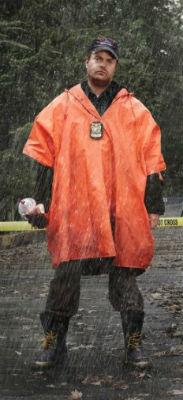 Rainn Wilson in Backstrom, a review